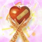 한능평, '무료지원' 히키코모리·강박증 등 증상 MBTI성격유형 활용 대인관계형성 돕는 심리상담사자격증 취득