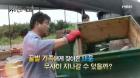 '휴먼다큐 사노라면' 3대째 이어 온 양봉장에 들이닥친 태풍
