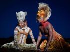 뮤지컬 '라이온킹' 리뷰… 아프리카 밀림을 옮겨놨더라