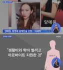 """'양예원 유출사진' 손수호 변호사, """"검색 통해 본 것만으로도 범죄 가담한 것"""" 들여다보니"""