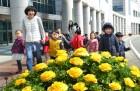 봄봄봄 봄이 왔어요