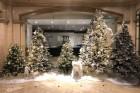 호텔가, 이른 크리스마스 경쟁 돌입!