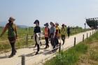 스트레스 해소하고 건강찾을 수 있는 '월드컵 공원 숲 라이프' 치유 프로그램