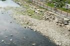내륙 곳곳 폭염특보-서울 등 오전 비…태풍 솔릭 모레 한반도 관통-피해 우려