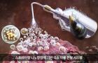 홍합 이용한 스프레이형 나노항암제 개발했다