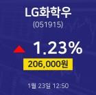 LG화학우주식주가 23일 현재 206500원