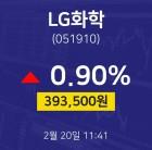 주식그래프 LG화학 주가 20일 현재 394000원