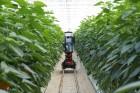농업의 진화 어디까지…하이테크 '수직농장'이 뜬다