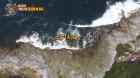 '채텀'은 어디? 뉴질랜드 남섬서 약 800km 떨어진 섬...원주민 '모리오리인' 거주