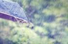 청주천안수원날씨 흐림, 경주날씨 '눈보라'에 양산날씨는 비소식 전해져…우산 필수! 오늘의 일기예보
