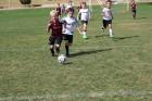 유소년 '8인제 축구', 거스를 수 없는 세계적 흐름