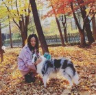 '둘째 임신' 김효진, 강아지와 산책마저 화보급